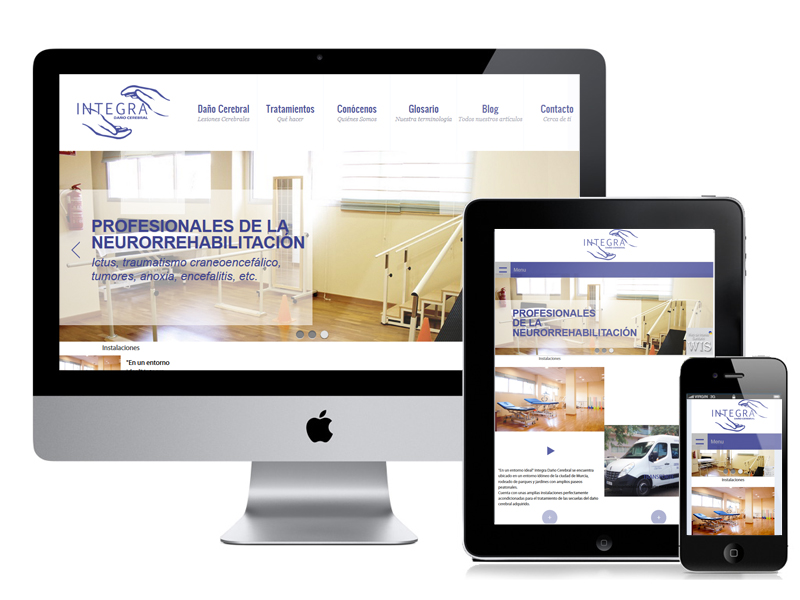 Diseño web Integra Cerebral