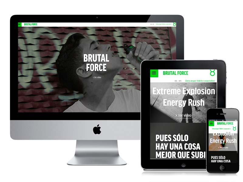 Diseño web Brutal Force