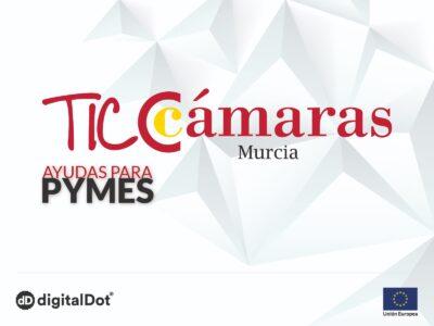 Ayudas a pymes TICCÁMARAS 2020